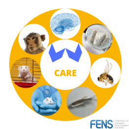 FENS Forum 2020 - FENS-CARE | Neuroscience Special Interest Event