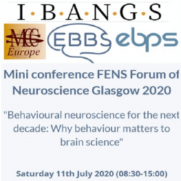 FENS 2020 - IBANGS, EBBS, EBPS, MCC Europe | Mini conference on neuroscience